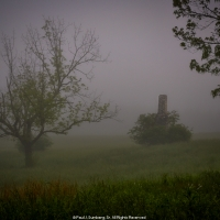 Apple Tree, Chimney and Early Morning Fog
